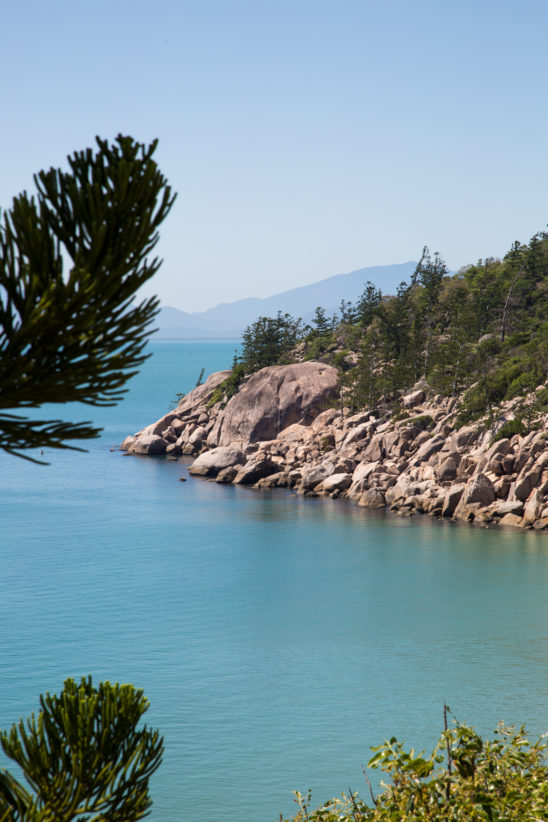 Magnetic Island ocean view through trees