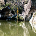 Swinging Rope at Coomba Falls Water Hole