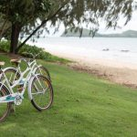 Bikes on the grass beside the beach in Palm Cove, Australia