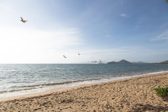 View from the beach in Palm Cove, Australia