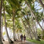 Couple walking through palm trees in Palm Cove, Australia
