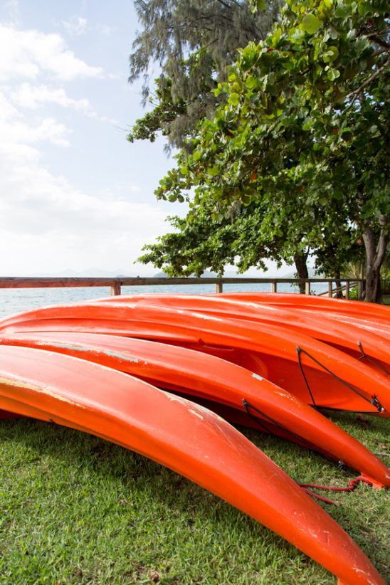 Bright orange kayaks on the grass at Palm Cove, Queensland.
